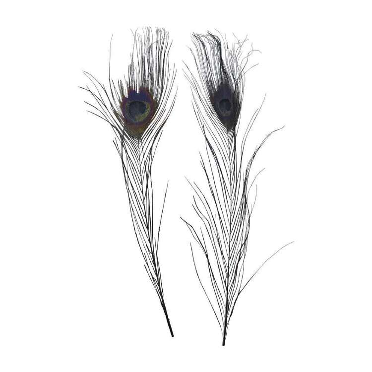Maria George Dyed Peacock Feather 2 Pack