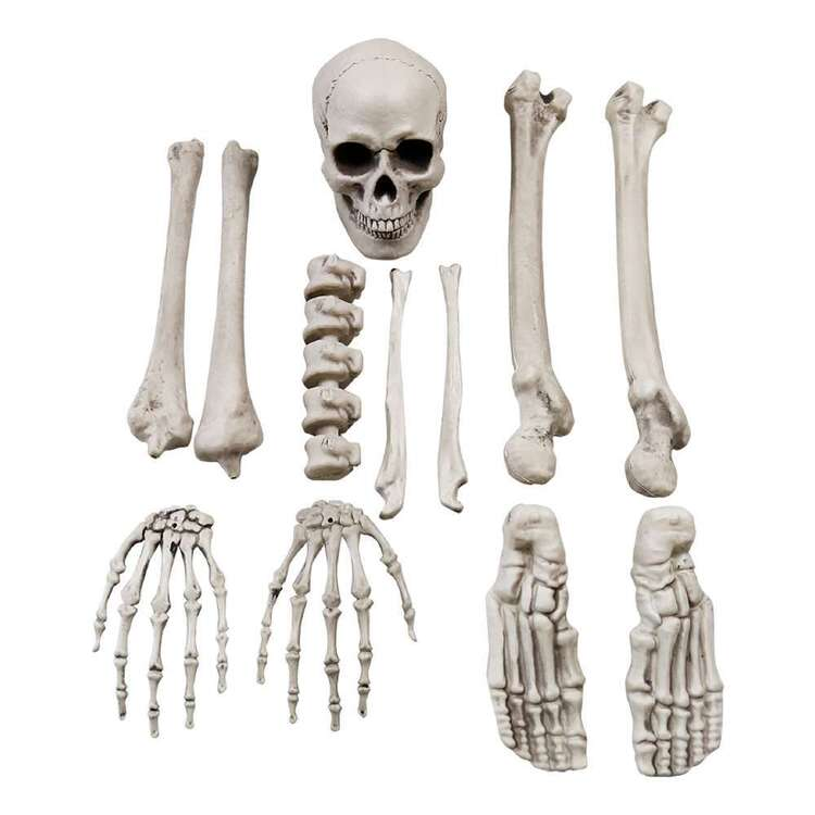 Spooky Hollow Bag of Bones