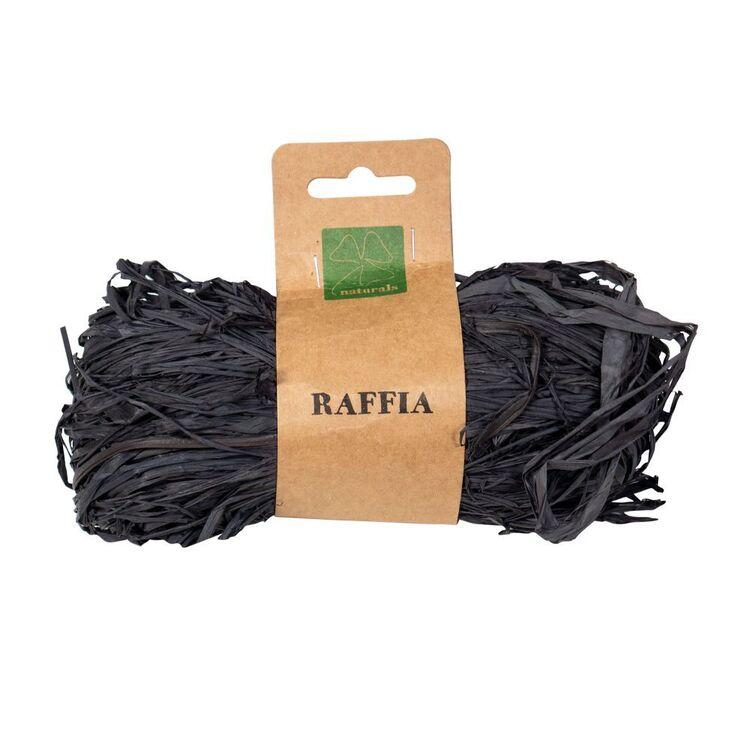Shamrock Craft Raffia Black Pollot