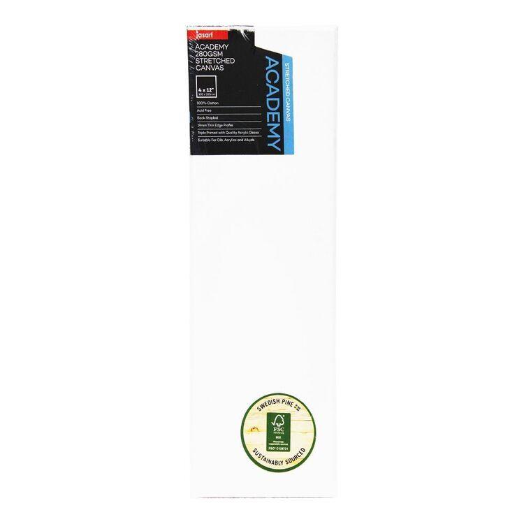Jasart Academy Thin Edge 4 x 12 in Canvas