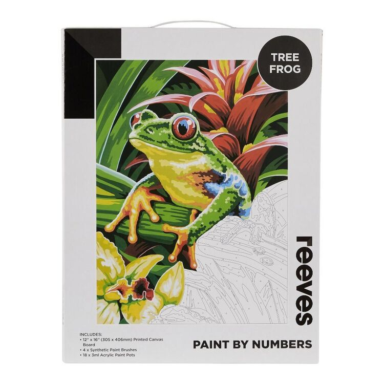 Reeves Paint By Numbers Tree Frog