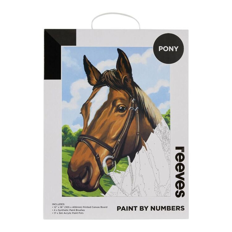 Reeves Paint By Numbers Pony