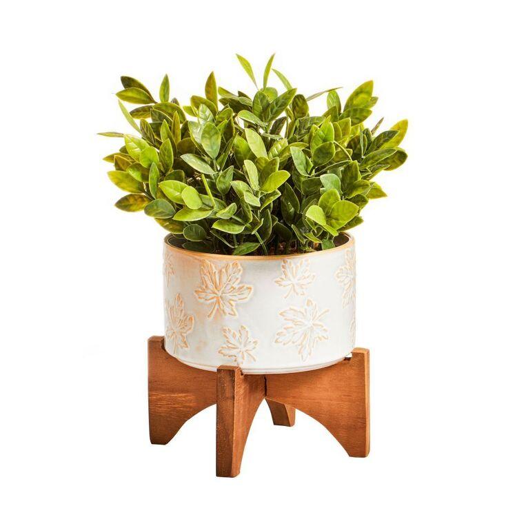 Cooper & Co Greenery In Ceramic Pot