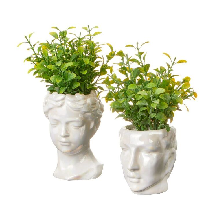 Cooper & Co Set Of 2 Roman Head Potted Plants