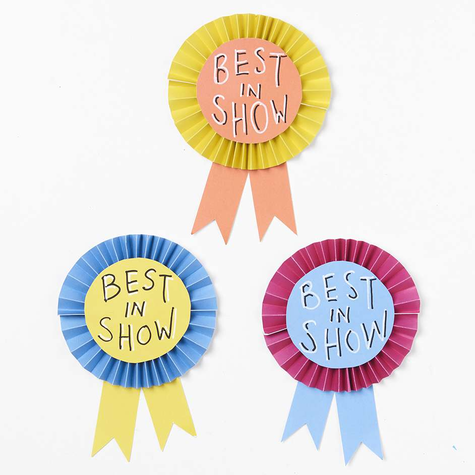 Best In Show Ribbon Project