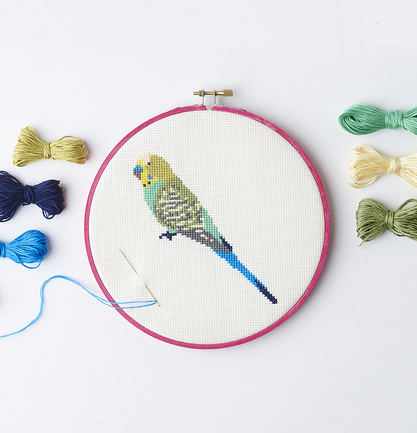 Budgie Embroidery On Aida Cloth Project