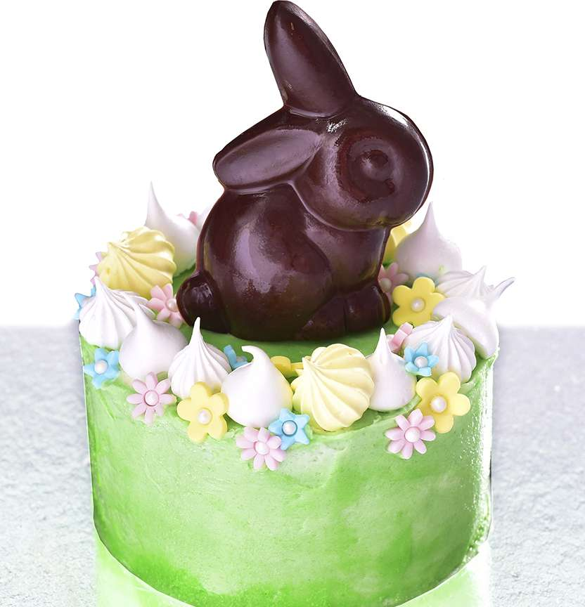 Bunny In The Garden Cake Project