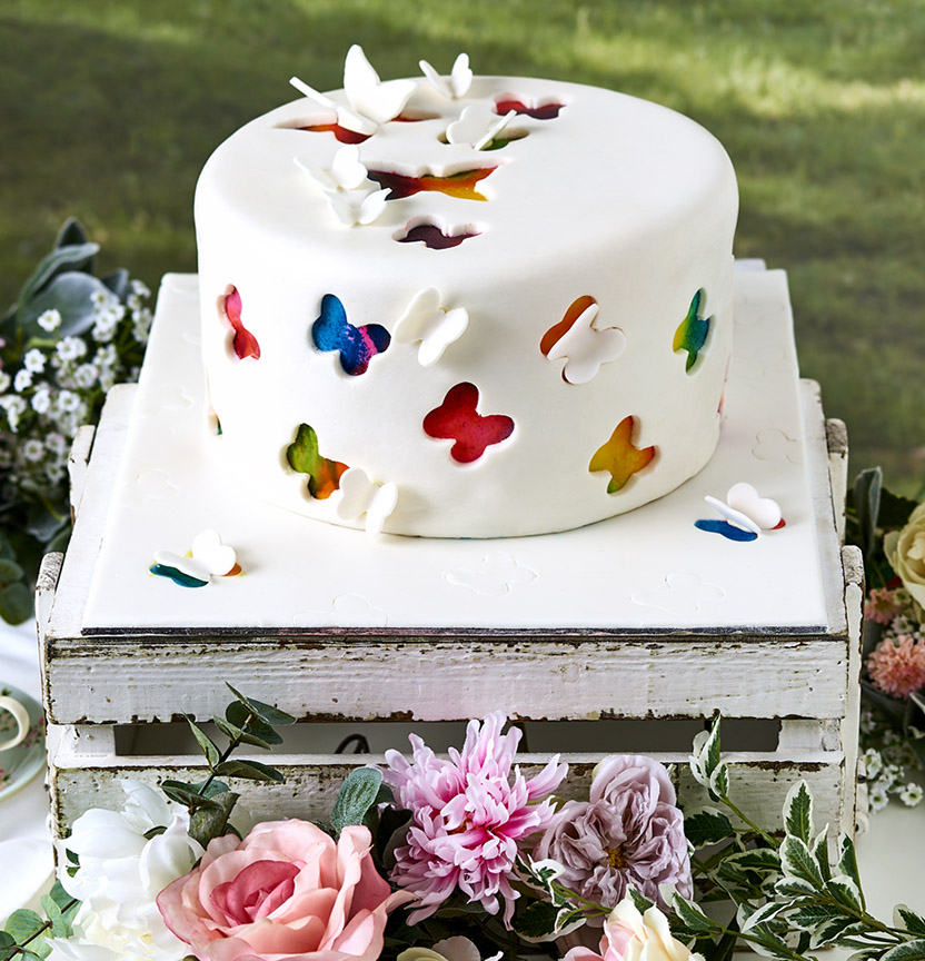 Butterfly Cut-Out Cake Project