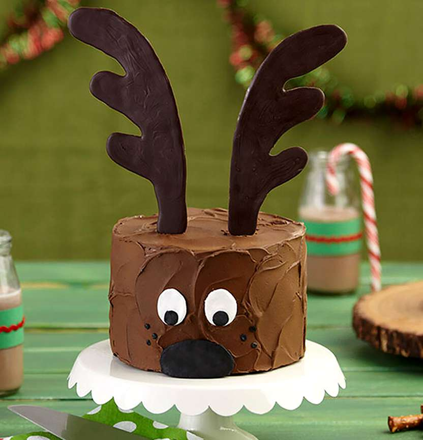 Christmas Reindeer Cake Project