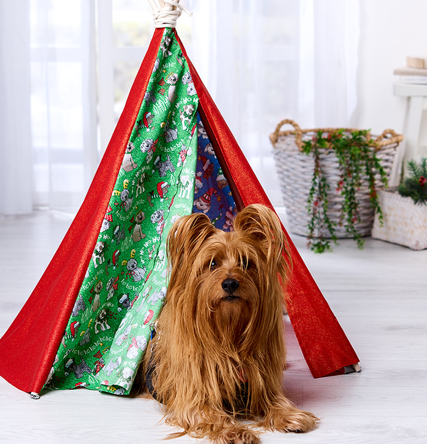Dog Tee Pee Project
