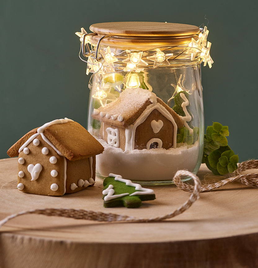 Gingerbread Terrarium Project