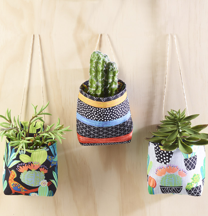 Hanging Cactus Club Holders Project