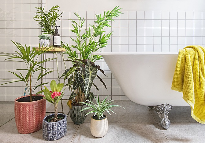 Real Plants? Faux Plants? Here's How To Mix Them Together