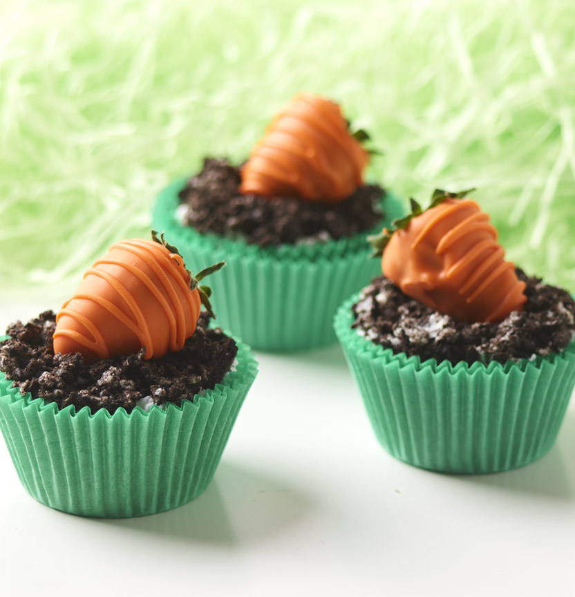 Oreo Carrot Cupcakes Project