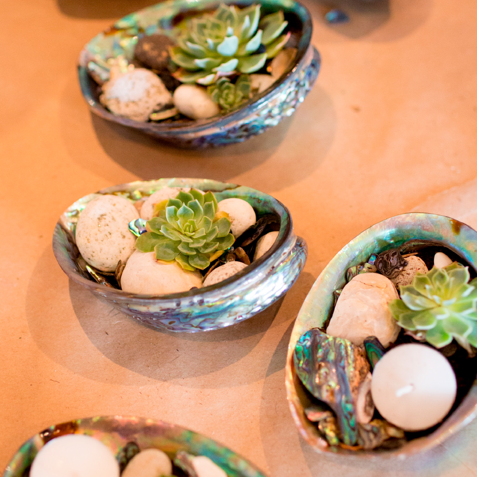 Paua Shell Planter Bowl Project