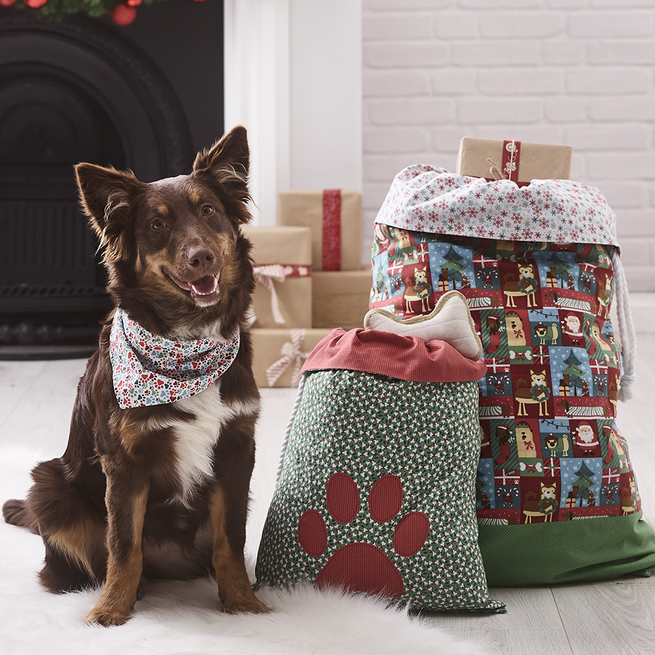 Pet Themed Santa Sacks Project
