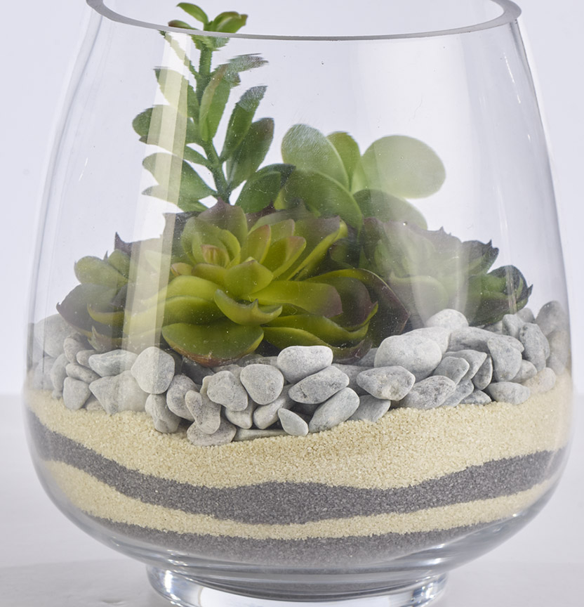 Sand And Stone Terrarium Project
