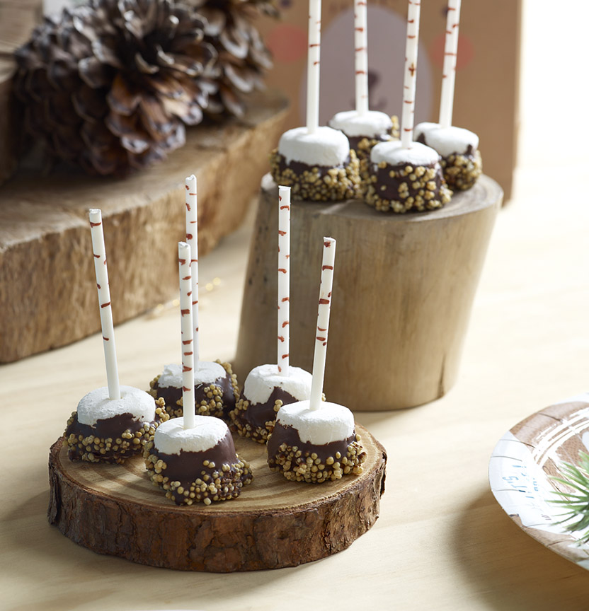 Smore Pops Project