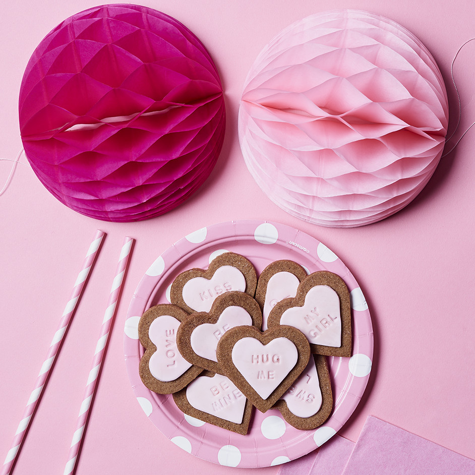 Valentines Day Gingerbread Cookies Project